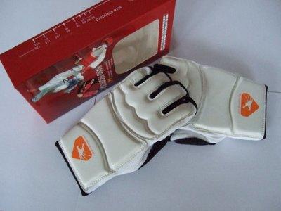 Taekwondo handschoenen
