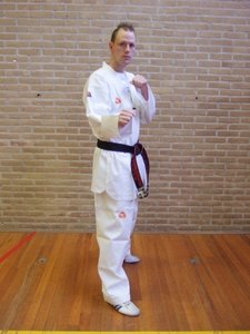 Taekwondo pak 200
