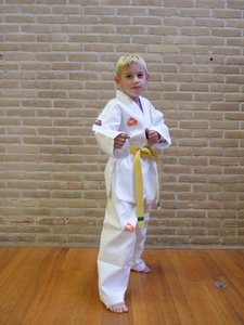 Taekwondo pak 120